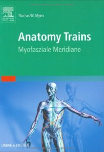 Anatomy Trains: Myofasziale Leitbahnen